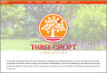Three Chopt Landscaping
